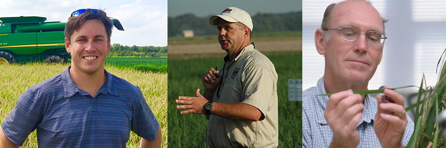 Dr. Eric Webster, Professor of Weed Science, LSU,Dr. Mo Way Professor of Entomology, Texas A&M Sidney Robnett Arkansas Rice Farmer