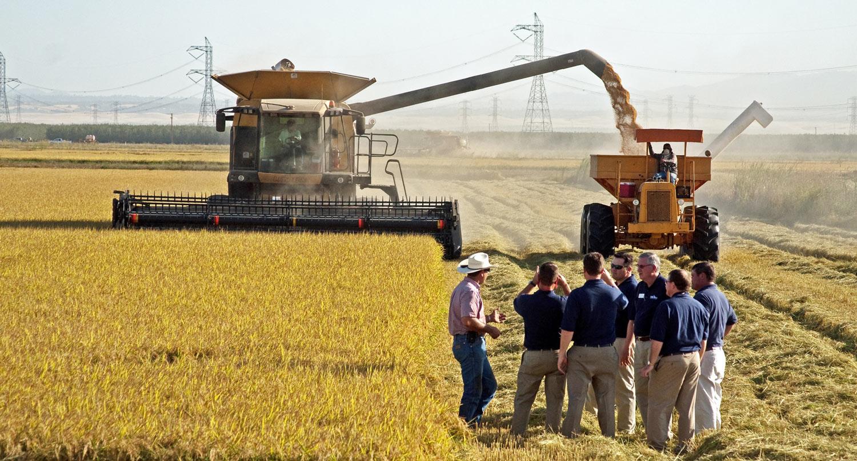 The Rice Leadership Development Program