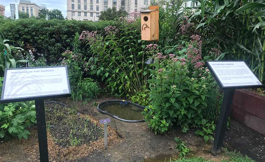 The Voice of the Farmer Garden in Washington DC