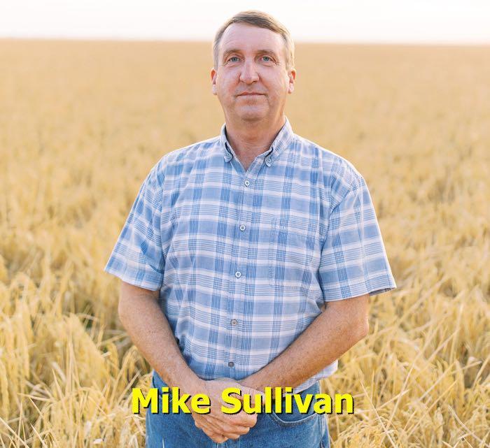 Mike Sullivan, Arkansas Rice Farmer