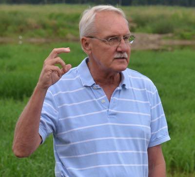 Dr. Steve Linscombe, USA Rice