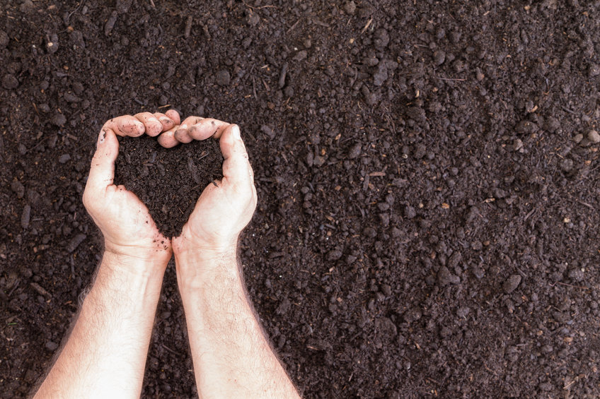 All About Soil Health: Cover Crops, Precision Planting, and Making it Work