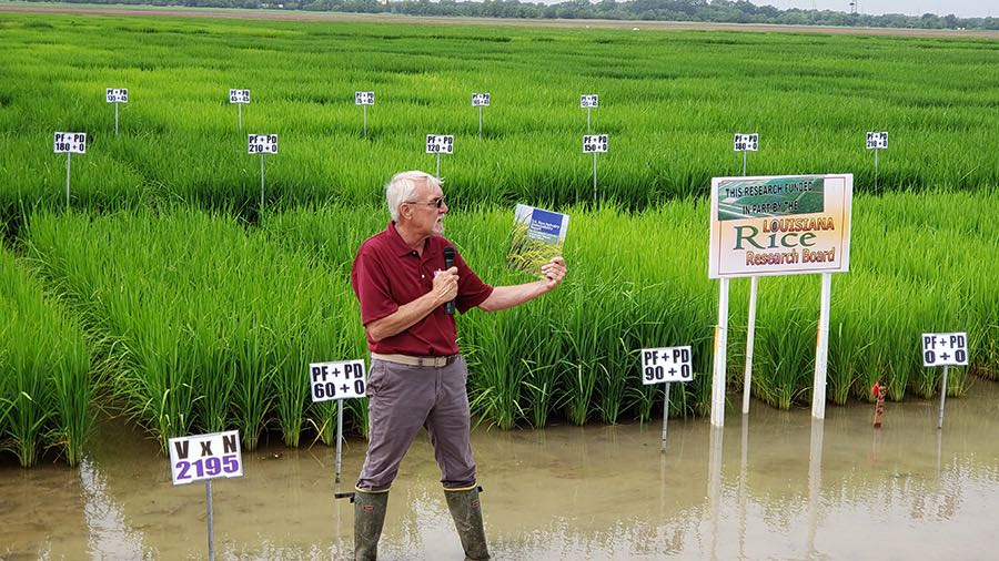 Dr. Steve Linscombe, USA Rice & The Rice Foundation